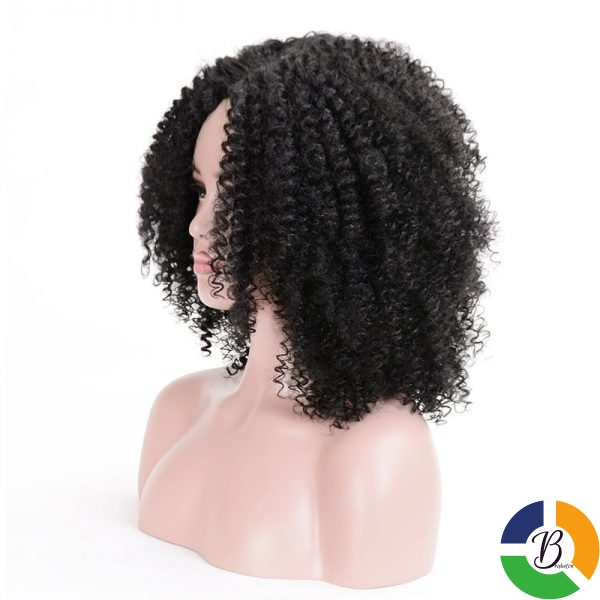 MSIWIGS Brown Synthetic Curly Wigs for Women 4 Colors Ombre Short Afro Wig African American 14 4 » Brabeton » The People's Marketplace » 26/09/2020