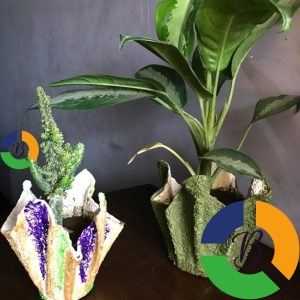 Indoor and outdoor pots and plants - Brabeton
